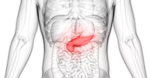 pancreatite pode ser detectada pelo Ultrassom de abdômen total